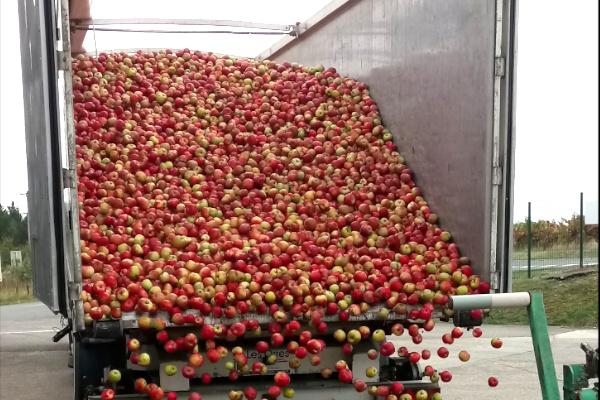 2 – Livraison des pommes