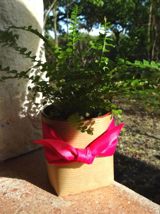 cache-pot-nature