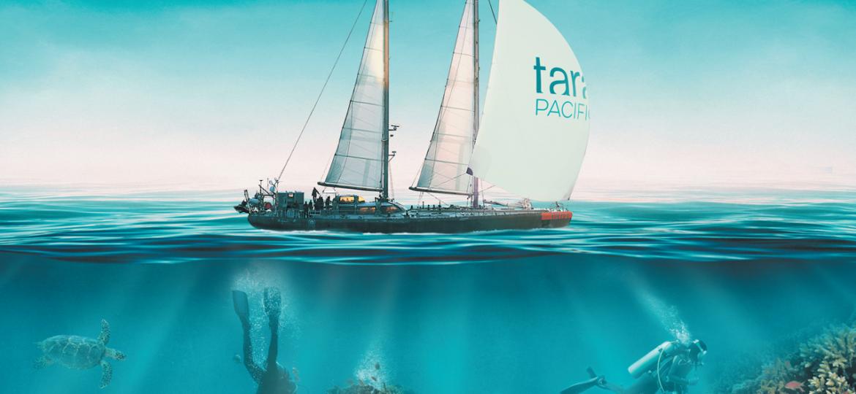 Goelette tara ocean dans le pacifique